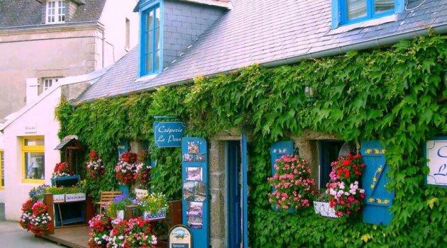 Вертикальное озеленение зданий