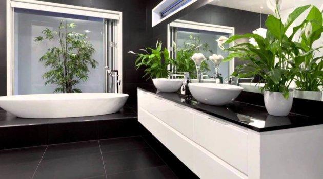 Черно белая ванна с комнатными растениями