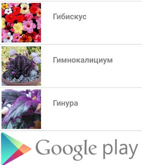 приложение в гугл плей по уходу за цветами